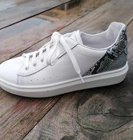 Romagnoli Romagnoli witte sneaker