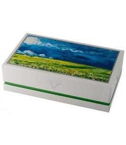 """Visconti Van Gogh """"Wheatfield under Thunderclouds"""" Roller"""