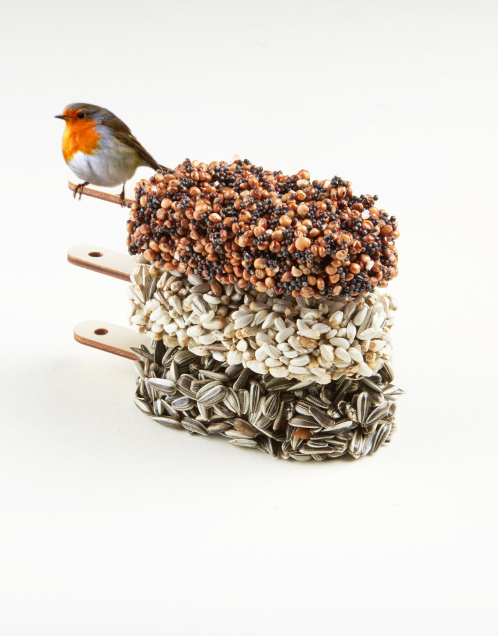 studio carmela bogman studio carmela bogman - dessert for birds - indian summer