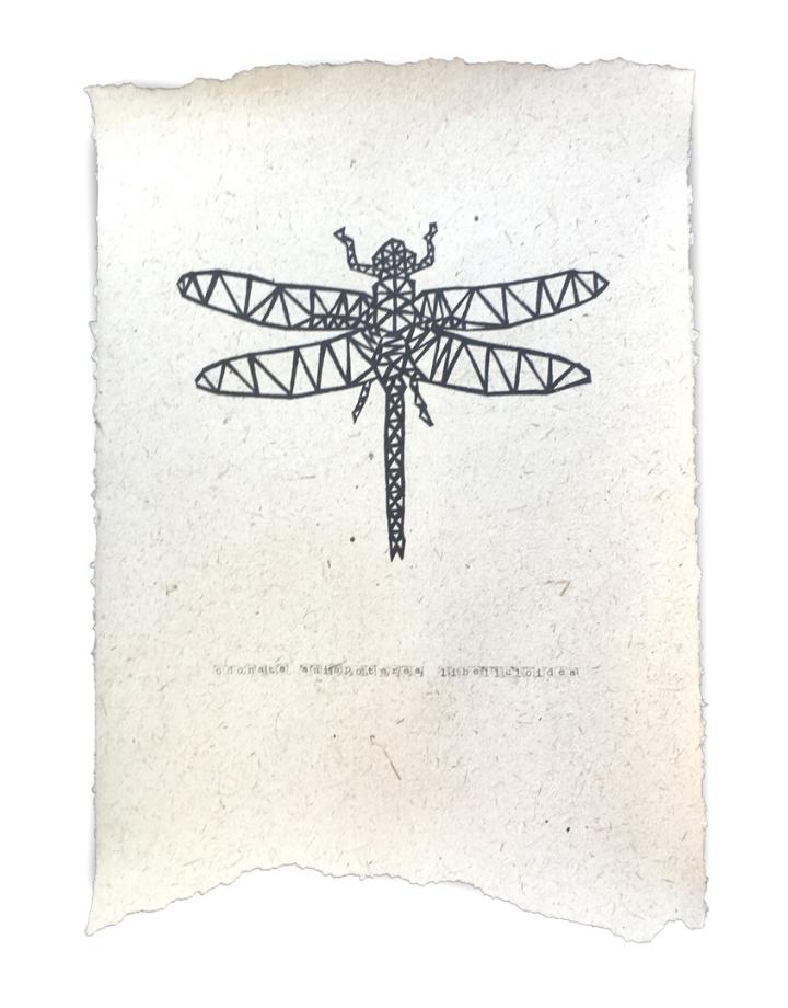 NADesign NADesign poster -  dragonfly