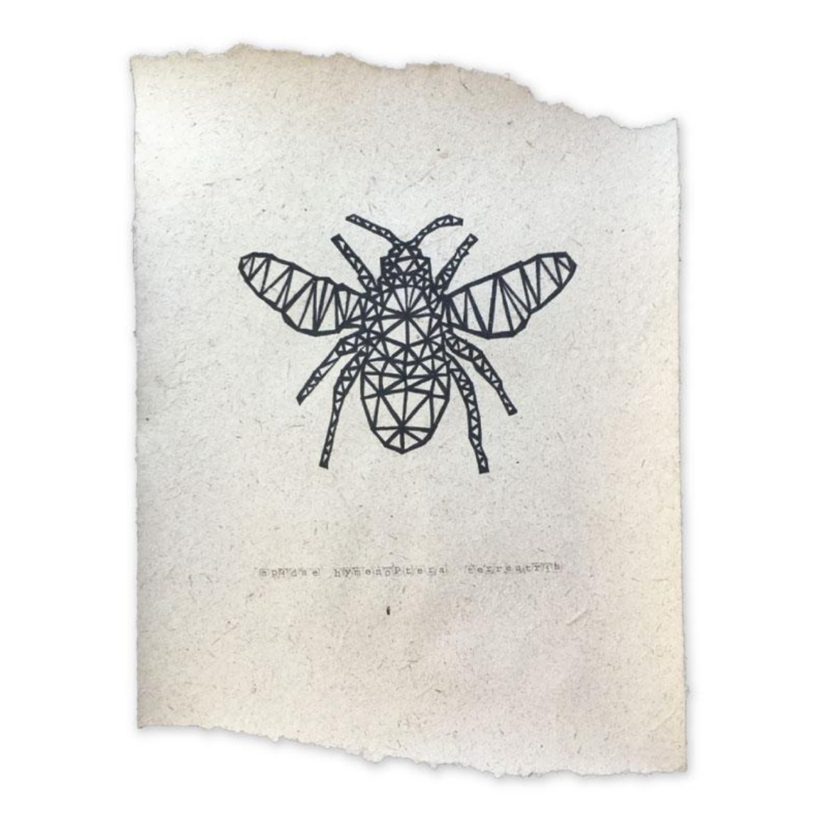 NADesign NADesign poster - bumblebee