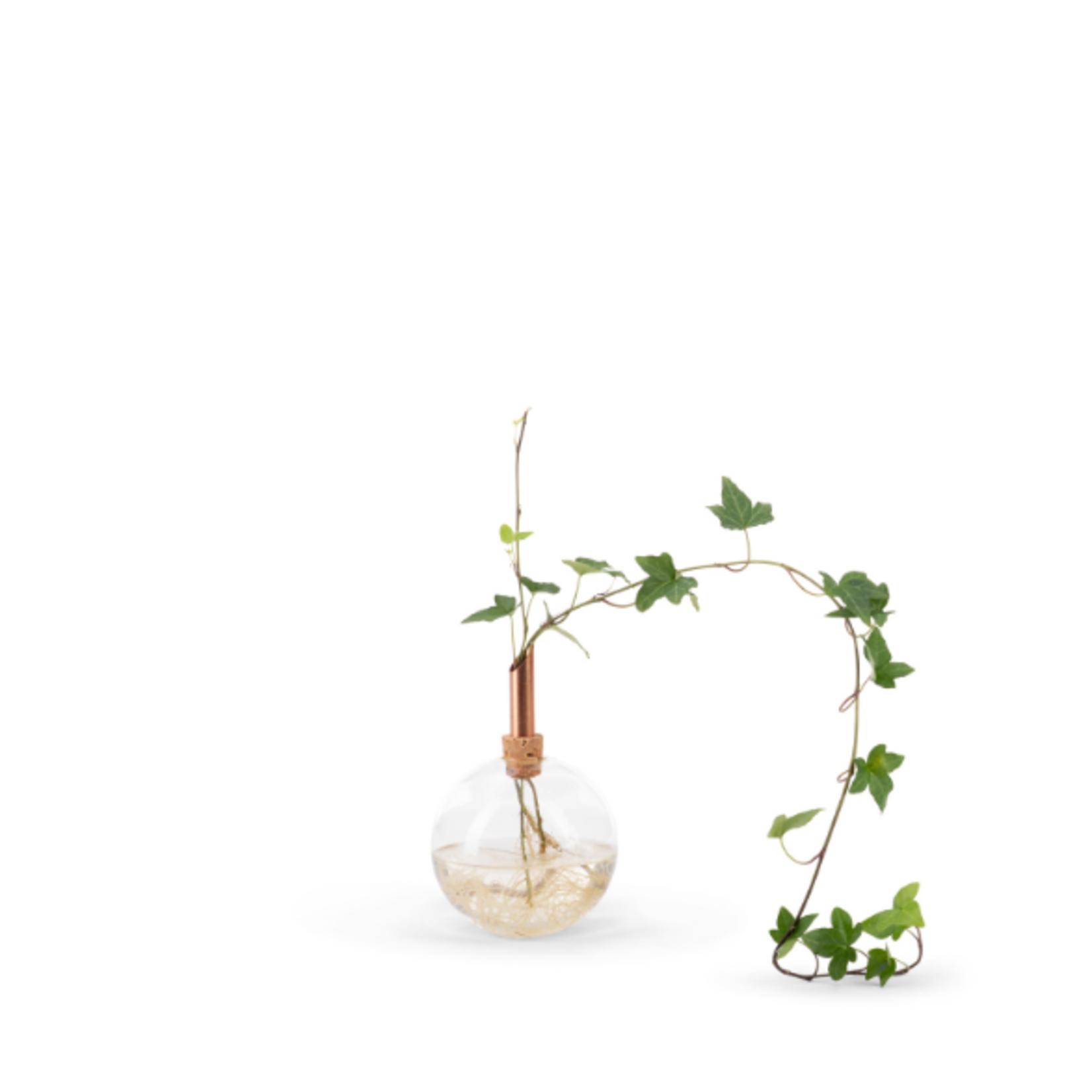 scandinavia form scandinavia form - glasilium vase