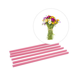 Wild Flowers fragrance sticks ScentSticks