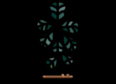 Immergrüne Bäume