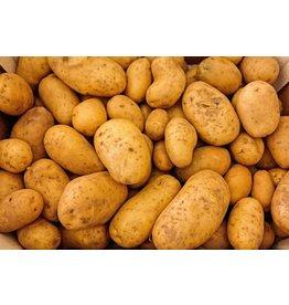 Aardappelen ras Connect Bloemig | 1kg (Klein Broekhuizen)