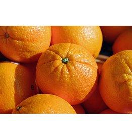 Sinaasappels Valencia (Klein Broekhuizen)