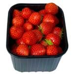 Aardbeien UITVERKOCHT (Wilting Groente & Fruit)