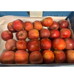 Goudreinette Appel | 1kg (de Stokhorst)