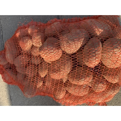 Aardappelen Bildstar | 10kg (de Stokhorst)