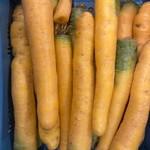 Gele wortelen | 500gr (de Groene Schuur)