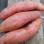 Zoete Aardappel | 700gr (de Groene Schuur)