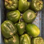 Groene paprika | per stuk (de Groene Schuur)