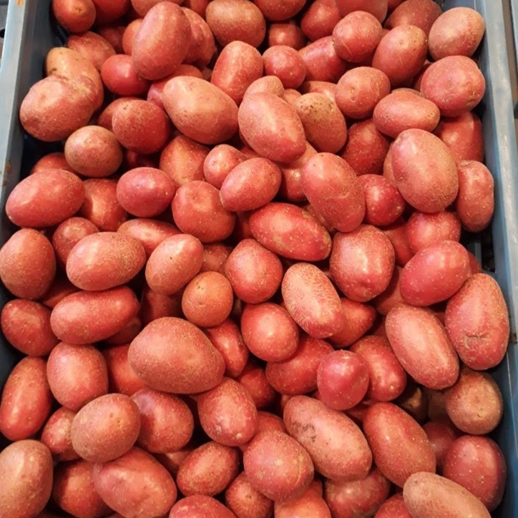 Roseval Aardappelen | 1kg (De Groene Schuur)