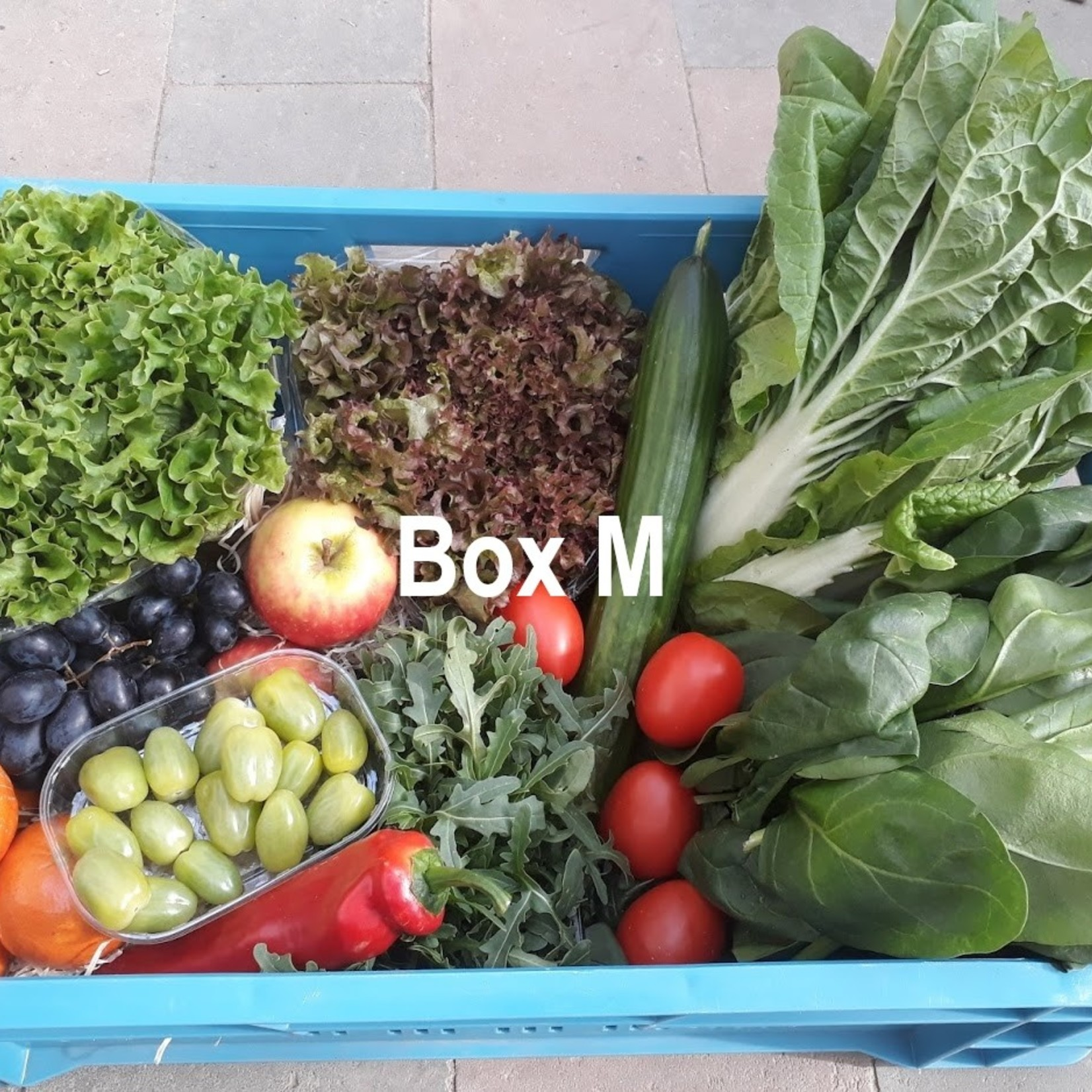 Groente/Fruitbox | Medium (De Groene Schuur)