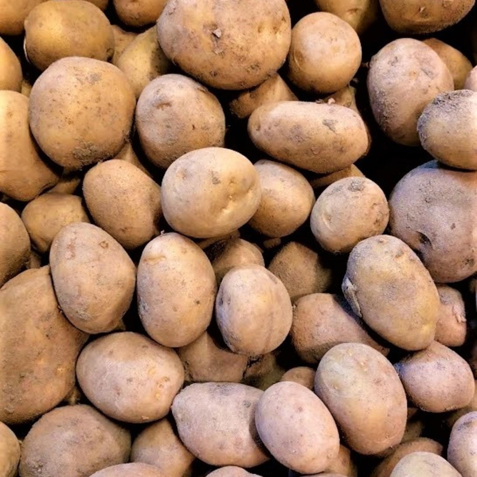 Aardappelen Frieslander NIEUWE OOGST | 1kg  (de Groene Schuur)