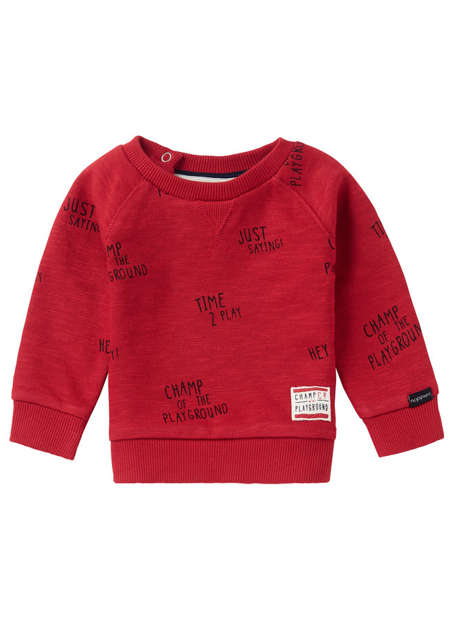 B Sweater LS Springs AOPScarlet Sage