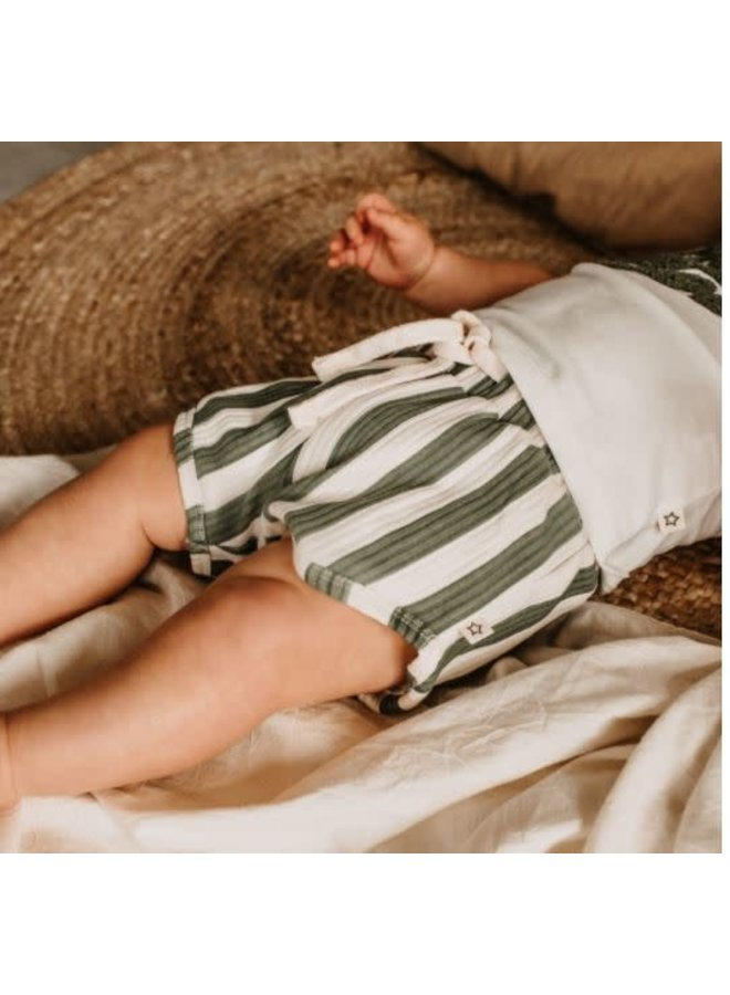 Bold Stripes   Shorts Old Green