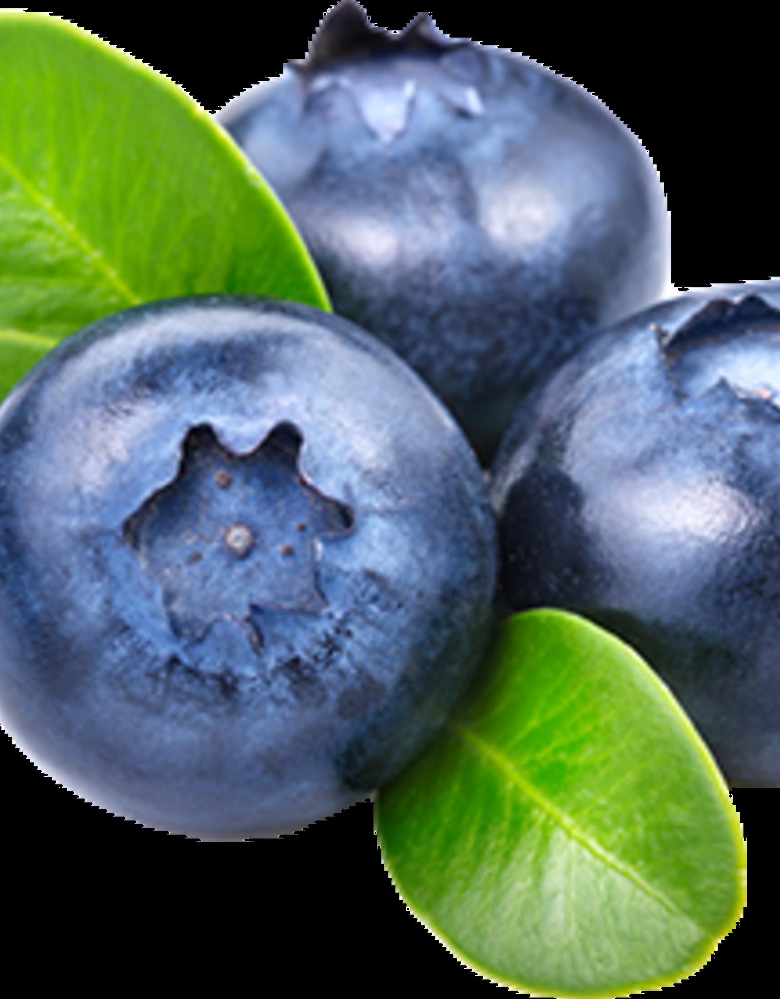 Waxmelt Black Berries 15 gram
