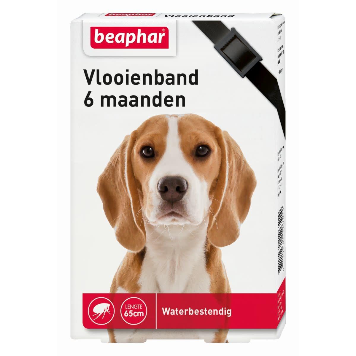 Beaphar BEAPHAR - VLOOIENBAND ZWART Hond