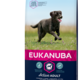 Eukanuba EUKANUBA - PUPPY&JUNIOR LARGE BREED 12 KG KIP