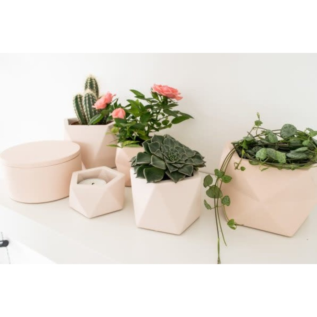 House Raccoon Theelicht / Airplant Houder - Millennial Pink