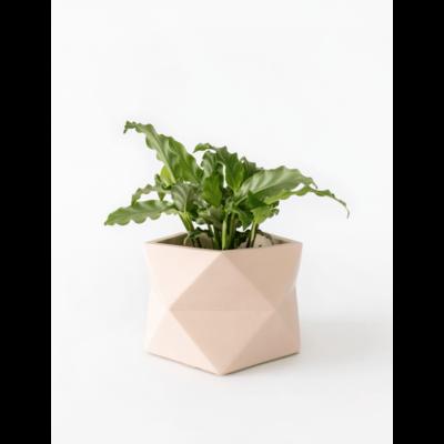 House Raccoon Palua Planter, Theelichthouder Ø 8,5 cm - Millennial Pink