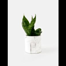 House Raccoon Emilia Planter, Theelichthouder Ø 6 cm - White Marble