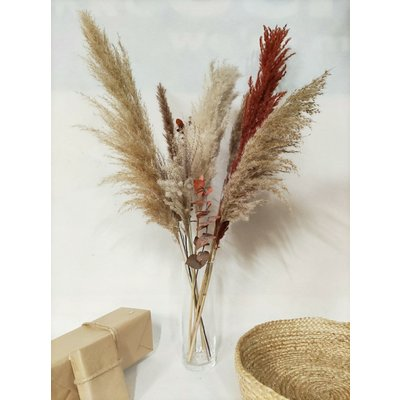 Pampas boeket, - diverse soorten pampaspluimen - beige-roest