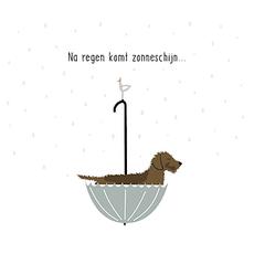 Frits Na regen komt zonneschijn