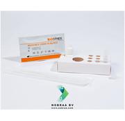 BIOSYNEX 25x Biosynex Covid-19 Neusswab zelftest Corona antigeen sneltest