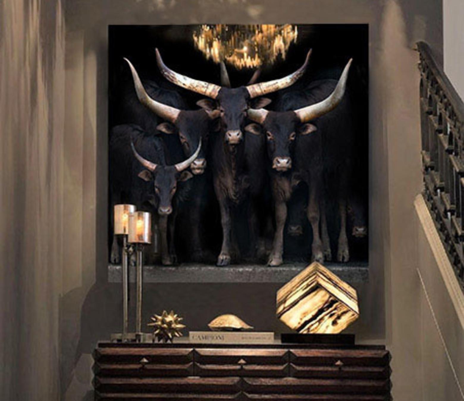 African Cattle foto-art op plexiglas