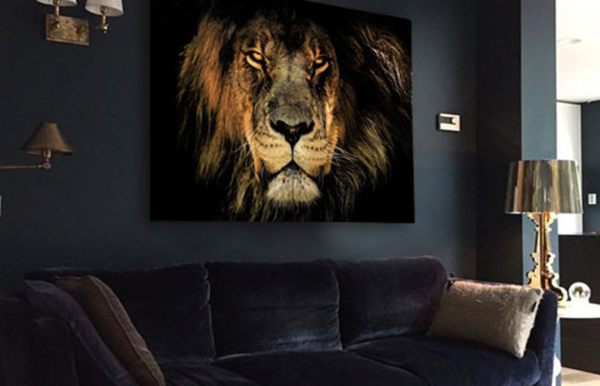King of the Jungle foto-art dibond