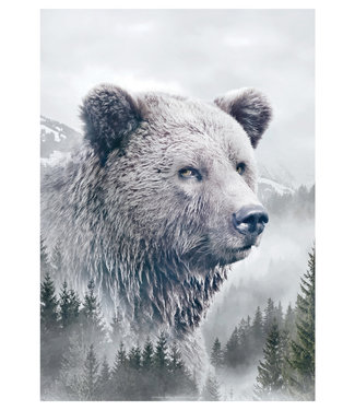 Faunascapes Faunascapes Poster Bear (different sizes)