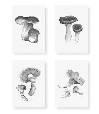 Teemu Järvi Teemu Järvi Card Set Wild Mushroom A5