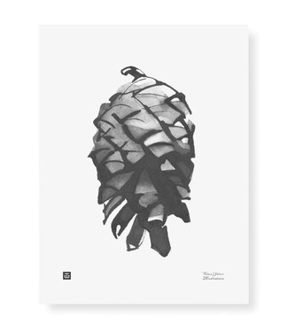 Teemu Järvi Teemu Järvi Poster Dennenappel 30 x 40 cm