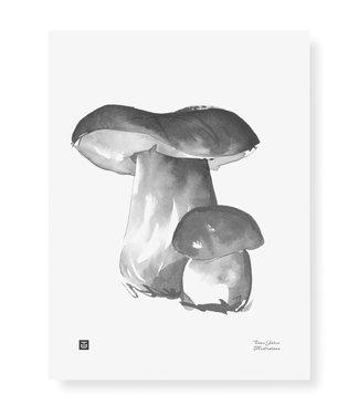 Teemu Järvi Teemu Järvi Poster Eekhoorntjesbrood Paddenstoel 30 x 40 cm