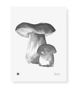 Teemu Järvi Teemu Järvi Poster Porcini Mushroom 30 x 40 cm