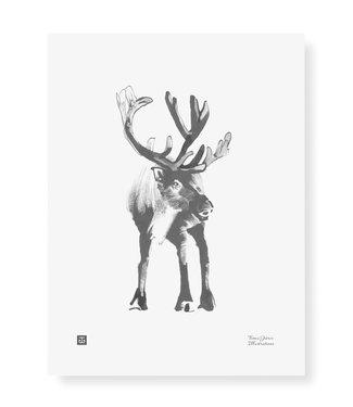 Teemu Järvi Teemu Järvi Poster Reindeer 30 x 40 cm