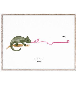Paper Collective MADO Poster Charlie de kameleon  30 x 40 cm