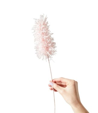 Studio About Studio About Paper flower Pampas grass rose