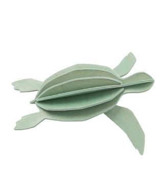 LOVI Lovi Schildpad Mint - 2 formaten - berkenhout 3D-dier DIY pakketje