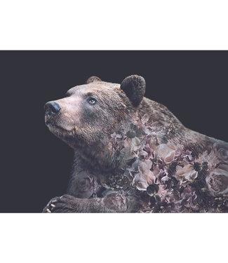 Faunascapes Faunascapes Poster Grizzly bear (diverse maten) Flower portrait