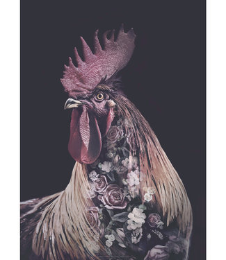 Faunascapes Faunascapes Poster haan - Burgundy Rooster (diverse maten) Flower portrait