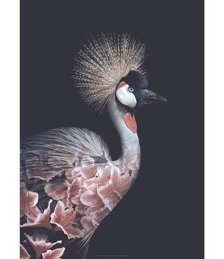 Faunascapes Faunascapes Poster Crowned Crane (various size) Flower portrait