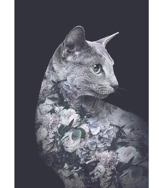 Faunascapes Faunascapes Poster kat  - Silver Cat (diverse maten) Flower portrait