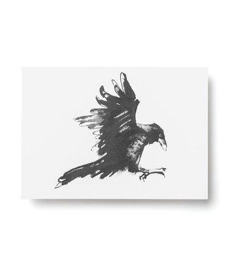 Teemu Järvi Teemu Järvi A6 kaart Raven