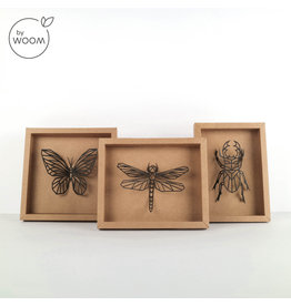 By WOOM |  Framed insects