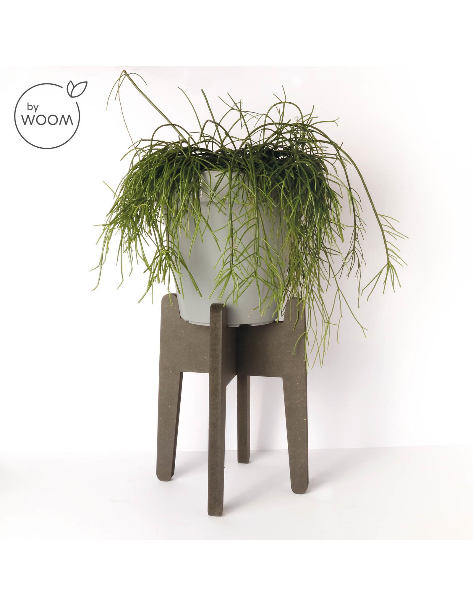 By WOOM |  Plantenhouder groot