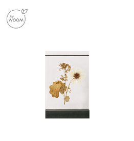By WOOM |   Dried flower holder