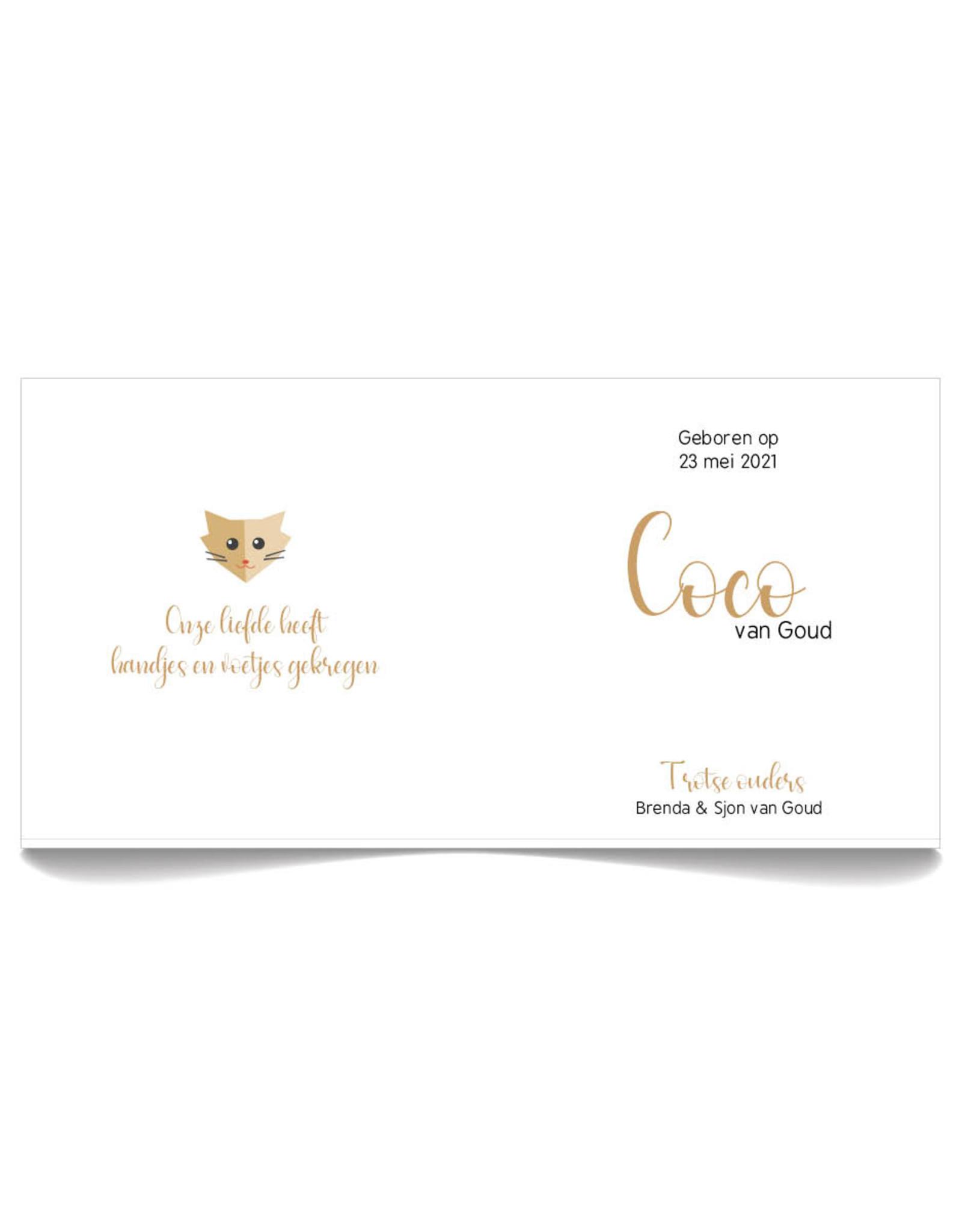 www.Robin.cards Geboortekaartje Oud Hollands gevouwen COCO